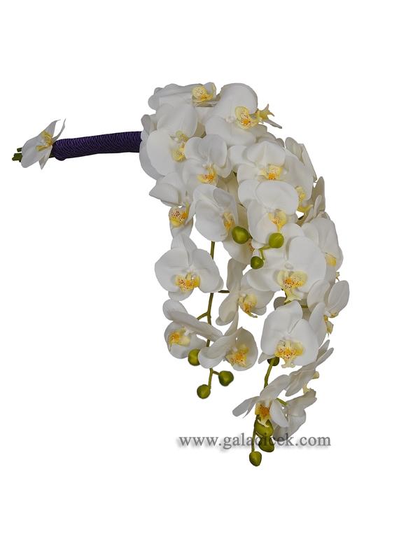 Orkide Gelinelçiçeği