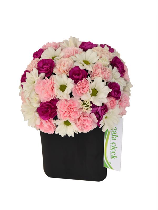 Premium vozoda renkli çiçekler