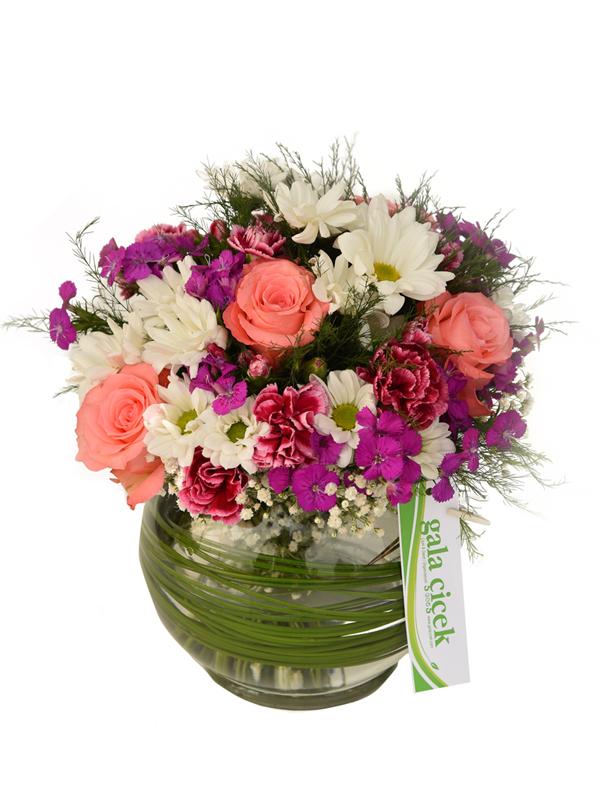 Akvaryum camfanusta çiçekler