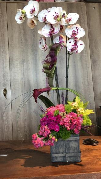 Avcılar Orkide Tasarım