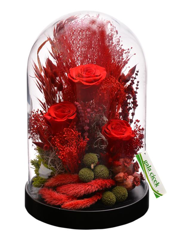 Kırmızı Aşk (ŞOKLANMIŞ GÜLLER)