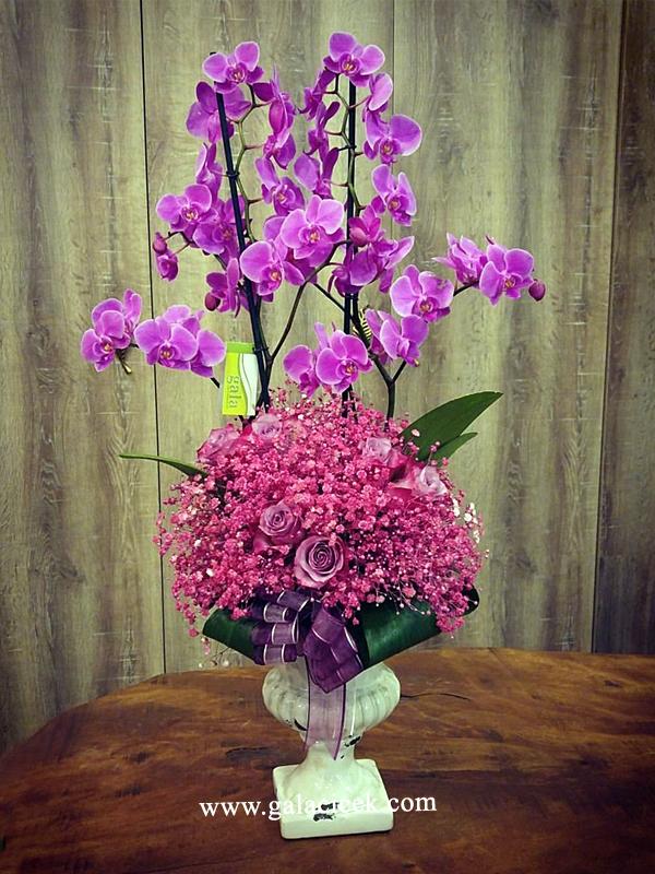 Butik Lila Tasarım Orkide ve Güller